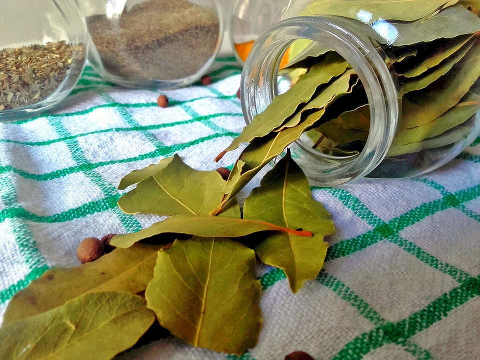 Utilizing bay leaves